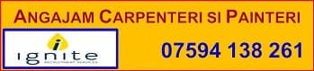 Angajam Carpenteri/ Painteri