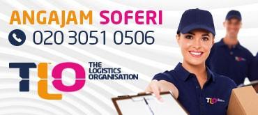 The Logistic Organization