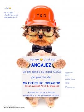 Anunturi UK ANGAJEZ MICROSOFT OFFICE PC OPERATOR
